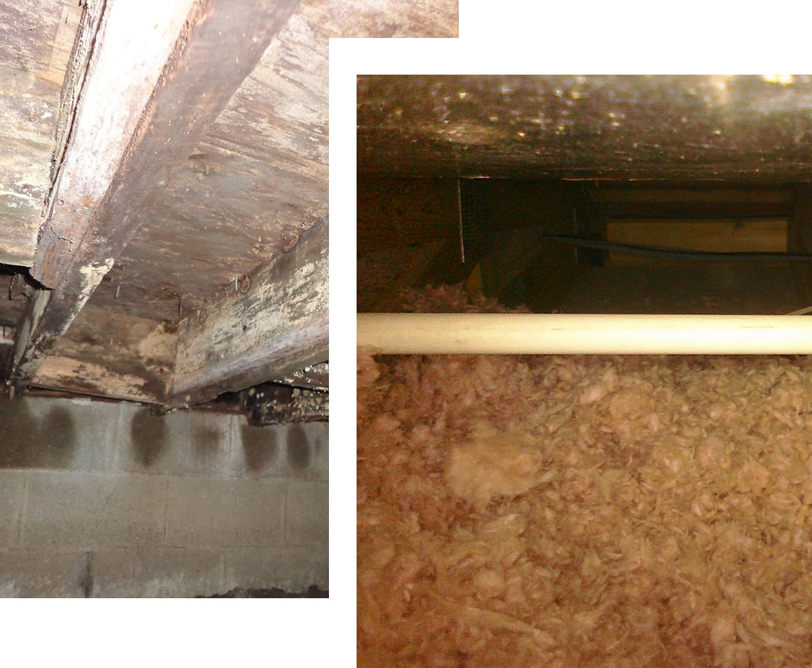 MDH Foundation Repair Crawlspace Insulation Blow-In