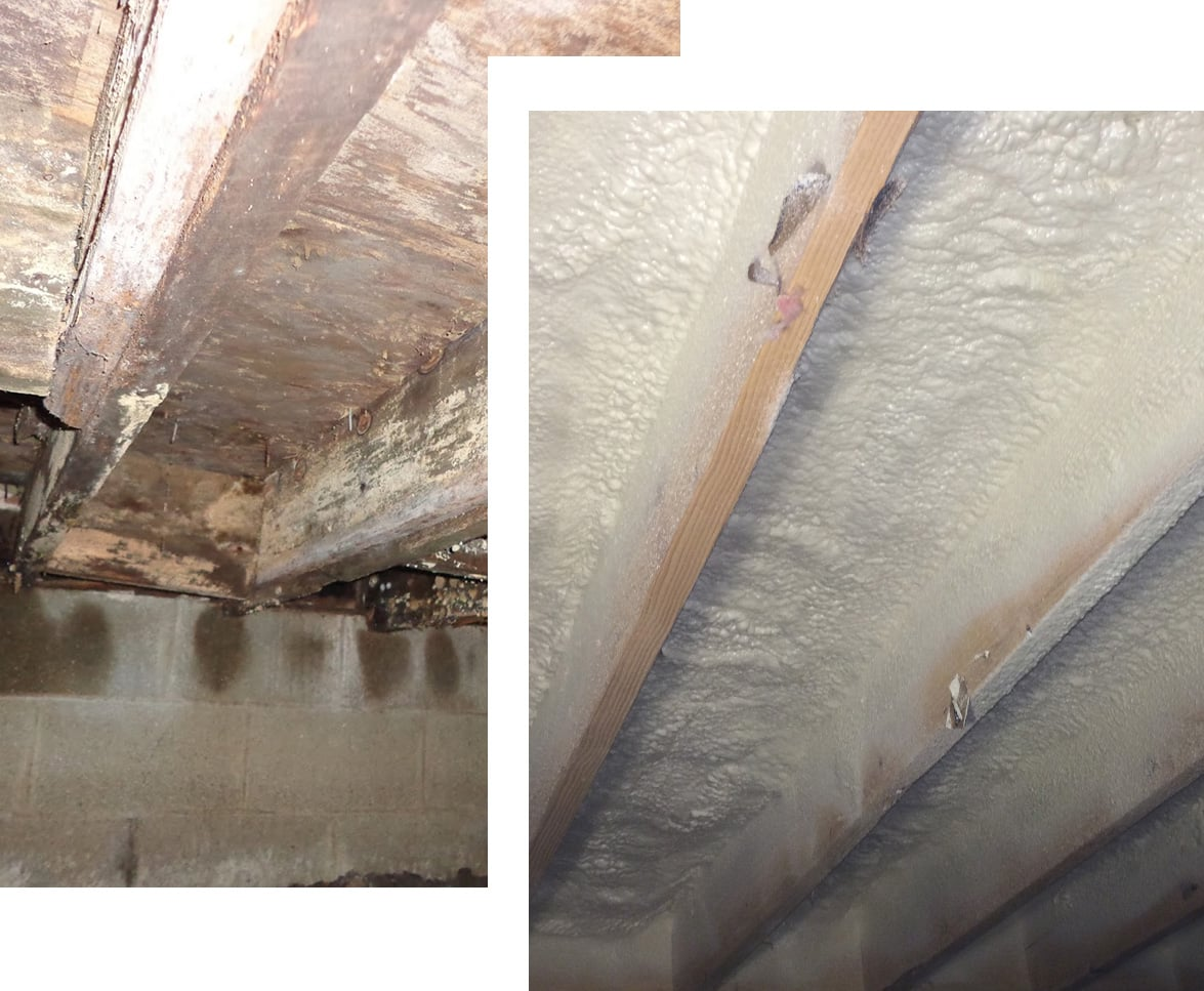MDH Foundation Repair Crawlspace Insulation Spray-In Foam