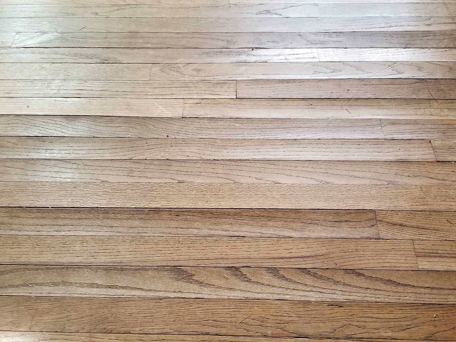 Buckling Floors